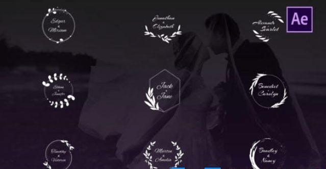 Videohive Wedding Titles