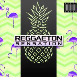 Kryptic Samples Reggaeton Sensation Vol.1 [WAV, MiDi] (Premium)
