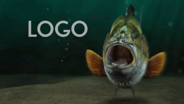 Videohive Fishing Opener 33600676 Free Download