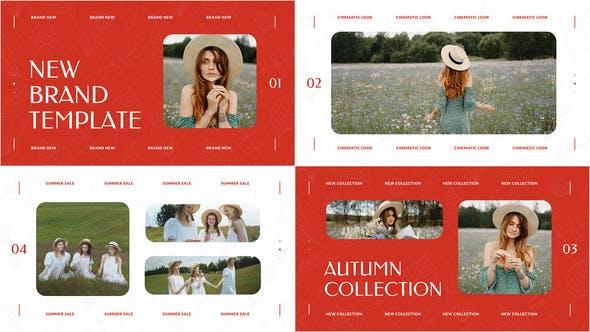 Videohive New Brand Presentation 33602019 Free Download