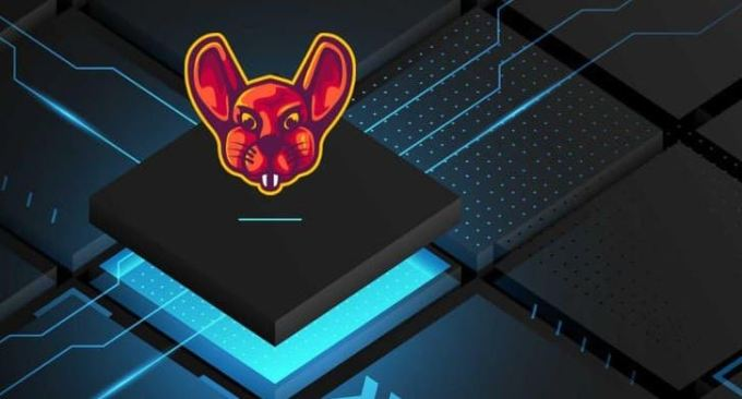 Broad Scope Bug Bounties From Scratch - Udemy