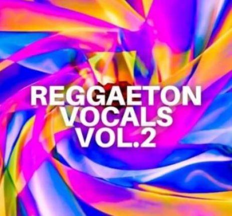 Diamond Sounds Reggaeton Vocals Vol.2 [WAV]
