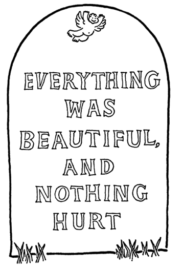 everything-was-beautiful-and-nothing-hurt.jpg