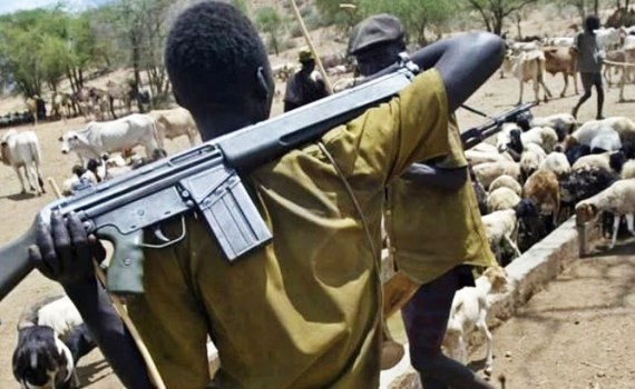 Image result for Ekiti to punish carriers of sophisticated weapons