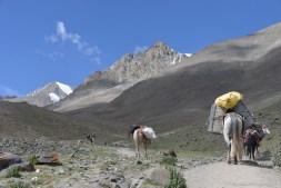 2014-08-04 09-45-22 Ladakh Stok Kangri 6000m