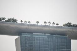 Infinite Pool du Marina Bay Sands