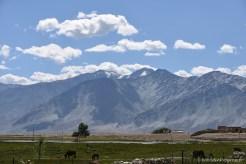 2014-08-10 09-40-58 Zanskar Villages