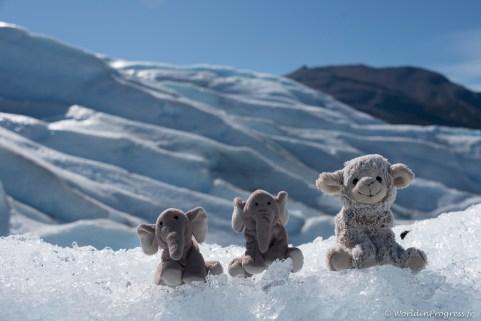 2016.03.12-1336-_DSC4435-Perito Moreno