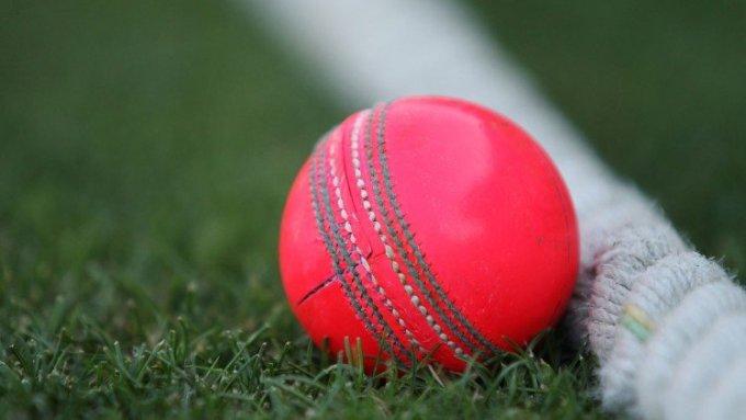 151126 Cricket Ball