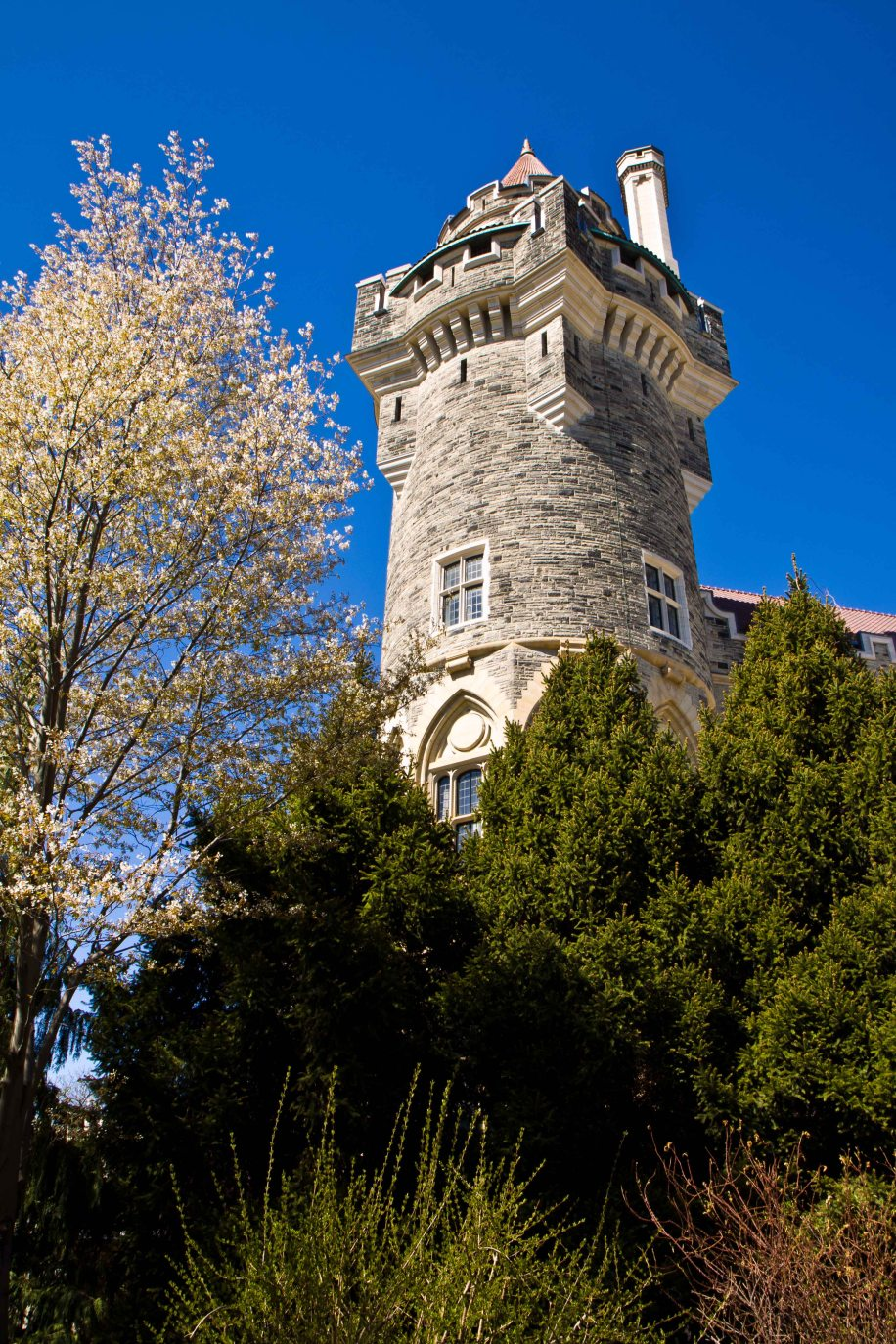 Casa Loma-Park and Tower
