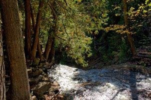 Halton Falls is born here