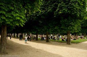 Luxembourg Garden Main Alley