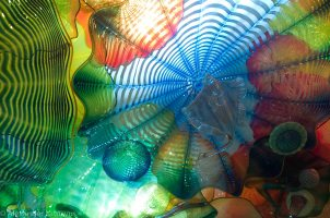 Chihuly-12