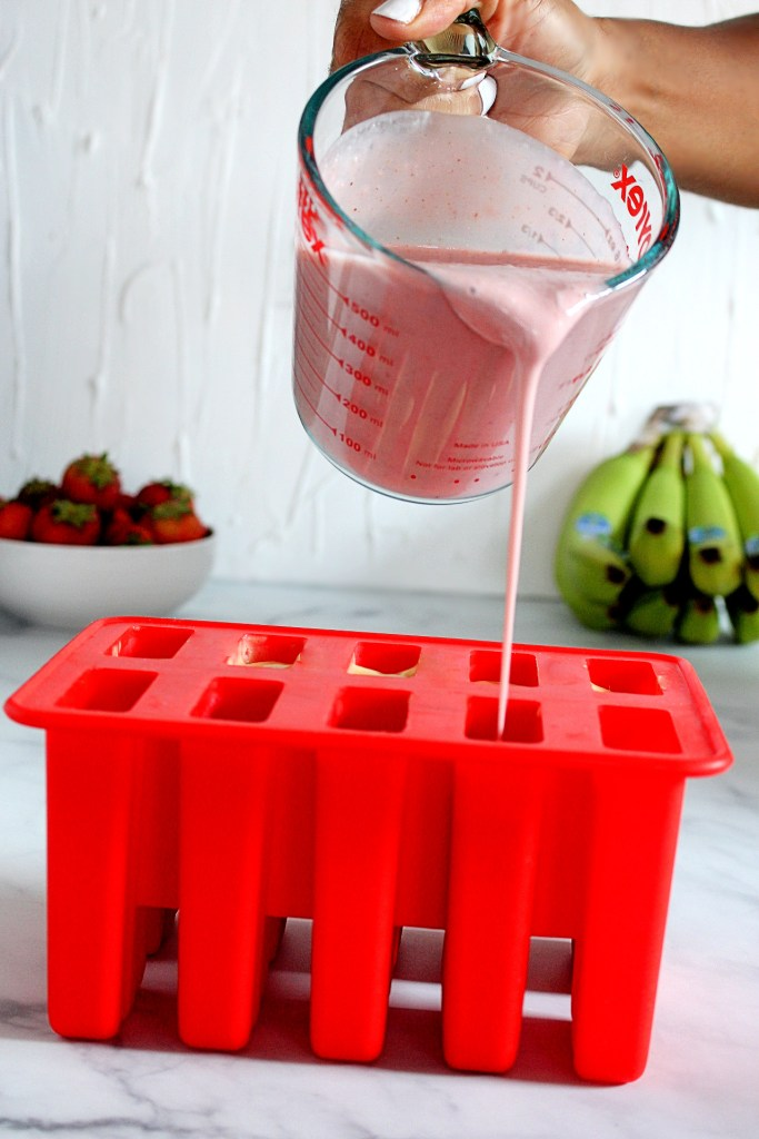 HOW TO MAKE HOMEMADE POPSICLE RECIPE 9