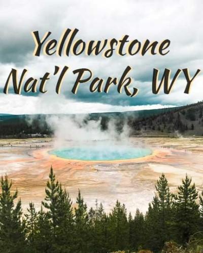 yellowstone-wy-icon-540---4x5-V2 (yellow bigger1)