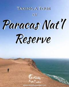 tour of paracas national reserve