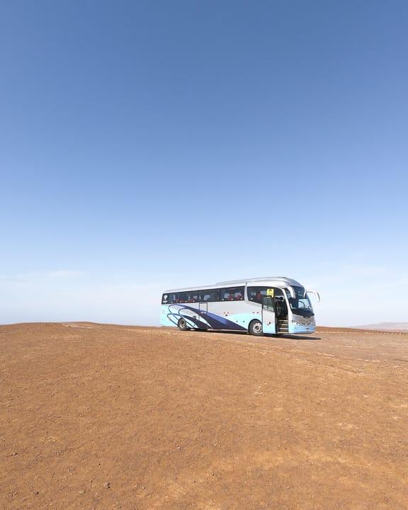 paracas national reserve tour with peruhop
