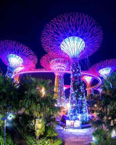 Budget Friendly things to do in Singapore: See a light show