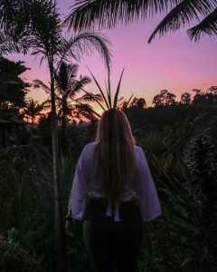 Camaya Bali: Sunset over Rice Fields