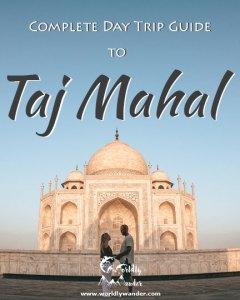 Taj-Mahal-Icon-2---540-4x5