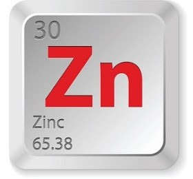 zn price cryptocurrency