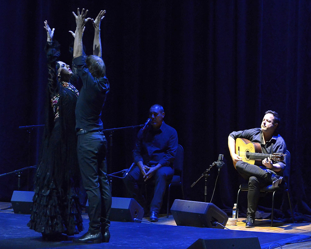 Focus on Flamenco - Memoria Antigua - Aga Khan Museum 02