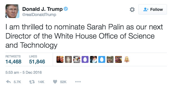 whitehousepalin