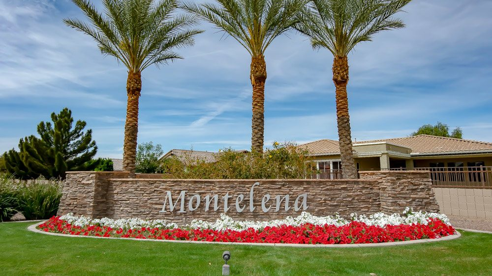 Montelena | Queen Creek, AZ
