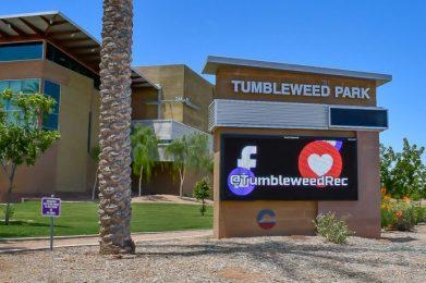Tumbleweed Park in Chandler, AZ