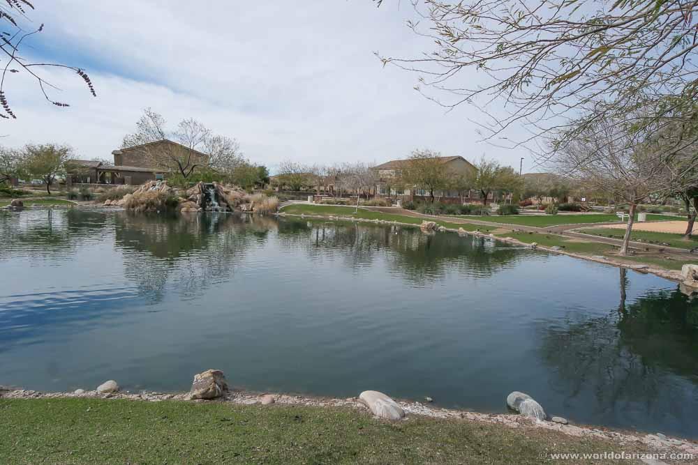 Bridges North | Neighborhood In Gilbert, AZ