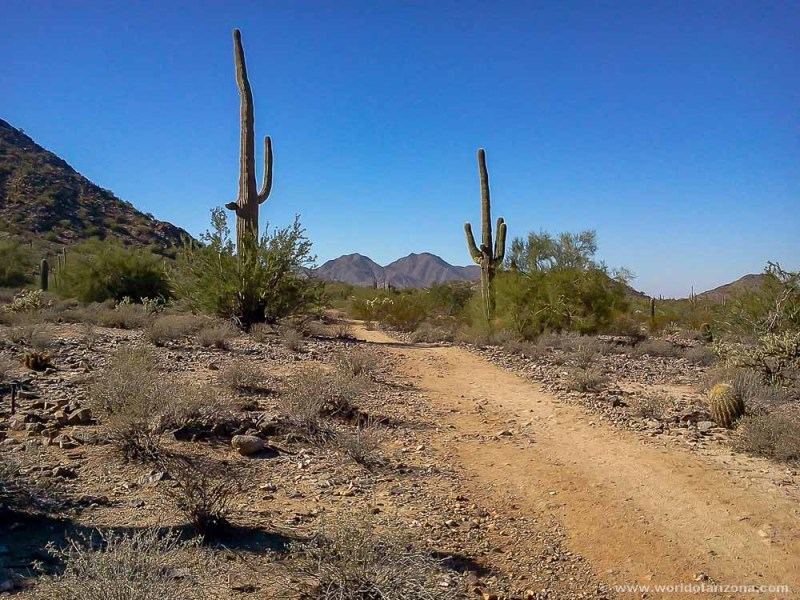 San Tan Mountain Regional Park | San Tan Valley, AZ