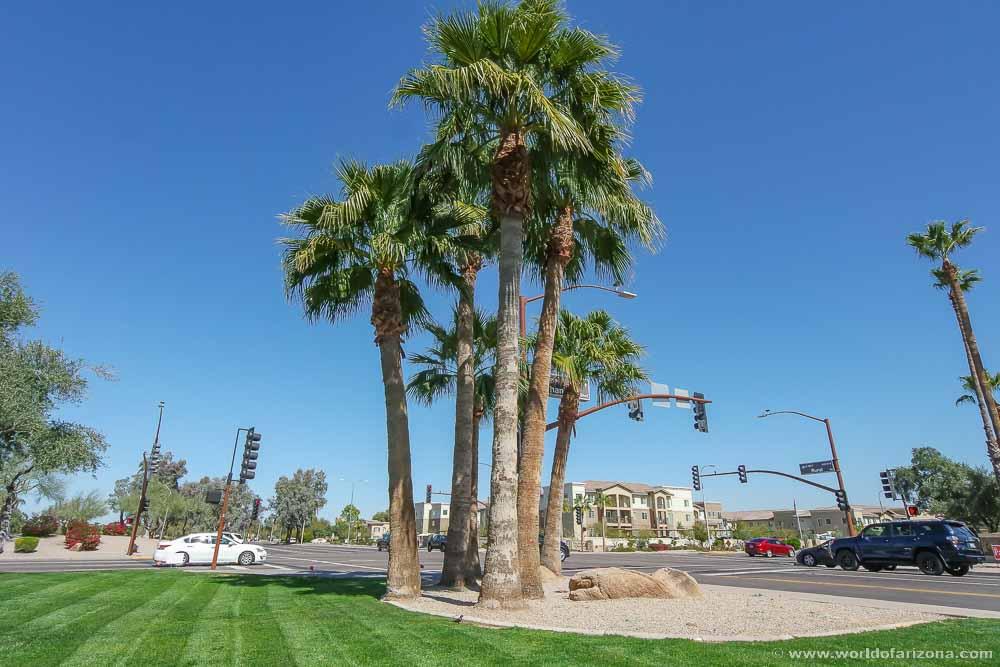 Twelve Oaks | Neighborhood In Chandler, AZ