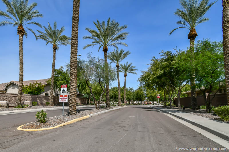 Alamosa Estates | Neighborhood In Chandler, AZ
