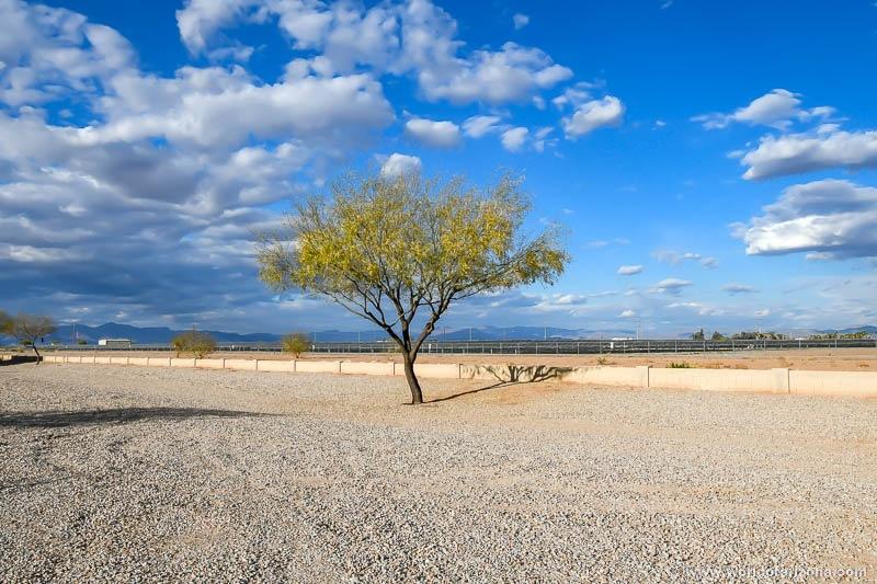 Quail Run | Neighborhood In San Tan Valley, AZ