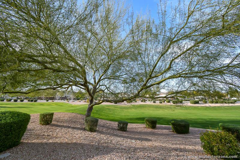 Taylor Ranch | Neighborhood In San Tan Valley, AZ