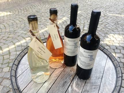 Bendida Winery