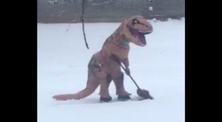 T-Rex-snow