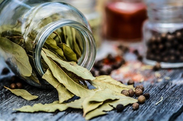 properties of bay leaves