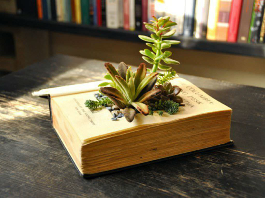 How To Make Your Own Book Planters For Succulents World