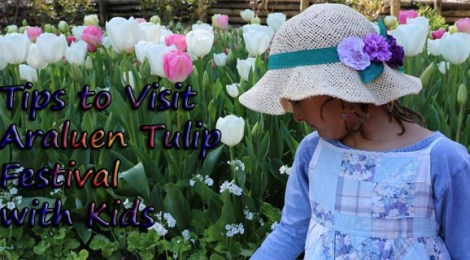 araluen tulip festival with kids, things to do with kids perth, araluen botanic garden for kids, kids activities perth