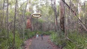 walpole, things to do in walpole western australia for kids, walpole for kids, walpole WA things to see