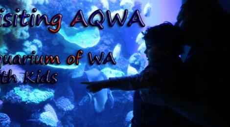 Visiting AQWA, Aquarium of WA with Kids, Tips to visit Aquarium of Western Australia with Kids