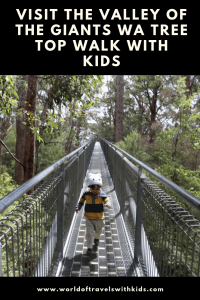Visit The Valley Of The Giants WA Tree Top Walk With Kids