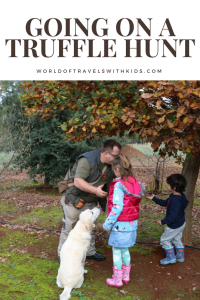 Going On A Truffle Hunt