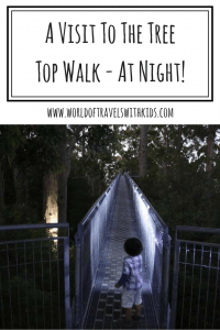 A Visit To The Tree Top Walk Denmark - At Night!