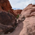 Hiking in Red Rock Canyon12