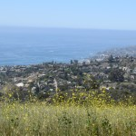 Overlooking to the ocean12