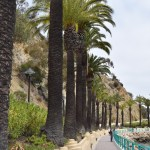Coastal walkway in Avalon12