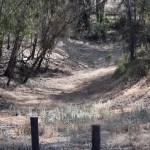 Valley near a trail12