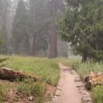 Artifical trail to Tokopah Falls12